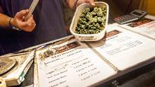 A dealer displays a container of cannabis at Sheeba, a coffeeshop, in Amsterdam, March 16, 2012. (MICHEL DE GROOT/NYT)