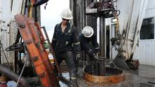 The B.C. Construction Association says its member companies have been hiring tradespeople laid off in the Alberta oil patch. (Kevin Van Paassen/The Globe and Mail)