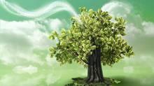 Green technology waving into nature (Tamara Lara Furrer/Getty Images/iStockphoto)