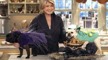 In this publicity image released by The Martha Stewart Show, host Martha Stewart poses during a taping in New York. (AP)