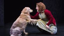 Casper as Sandy and Jenny Weisz as Annie in Young People's Theatre production of Annie. (Cylla von Tiedemann)