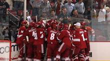 The Phoenix Coyotes celebrate after Adrian Aucoin scored the game-winning goal in overtime against the Detroit Red Wings at the Jobing.com Arena on Oct. 22. (Christian Petersen/Christian Petersen/Getty Images)