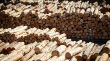 Logs to be processed at Interfor's mill in Delta, B.C. (DARRYL DYCK FOR THE GLOBE AND MAIL)