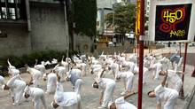 Elderly Japanese immigrants practice exercises during the early morning hours in Liberdade square in Sao Paulo, January 24, 2004. Sao Paulo, the world's biggest Japanese neighborhood outside of Japan, celebrated its 450th birthday anniversary on January 25, 2004. (Paulo Whitaker/Reuters/Paulo Whitaker/Reuters)