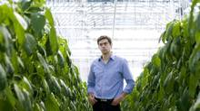 Mohamed Hage, founder and president of Lufa Farms Inc., runs a greenhouse that is built on top of a commercial building in Montreal. (Graham Hughes/The Canadian Press)