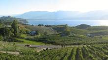 Sunny Okanagan is becoming the ideal choice for an increasing number of working Albertans.