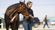 Trainer Carolyn Costigan embraces Nancy O at Woodbine Racetrack in Toronto, Ontario Thursday Sept. 13, 2012. (Tim Fraser/Tim Fraser)