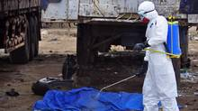 The body of a man found in the street, suspected of dying from the ebola virus, is sprayed with disinfectant in the capital city of Monrovia, Liberia, Tuesday, Aug. 12, 2014. (Abbas Dulleh/AP)