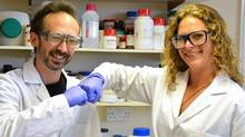 Researchers David Whitworth, left, and Sara Mela, pose for photo in the lab at Prifysgol Aberystwyth University in Aberystwyth, Wales. According to results published online Monday, July 28, 2014, in the American Journal of Infection Control the researchers found that the knocking of knuckles, fist bump, spreads only one-twentieth the amount of bacteria that a handshake does. (Prifysgol Aberystwyth University)