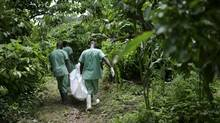Red Cross workers carry the body of Marie Conde, 14, who died of Ebola, through the bush in Koundony, Guinea earlier this month. (SAMUEL ARANDA/NYT)