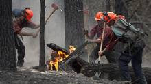 Firefighters tackle a flare up at the Smith Creek fire located on a hillside in West Kelowna, B.C., Saturday, July, 19, 2014. (JONATHAN HAYWARD/THE CANADIAN PRESS)