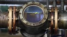 Biodiesel is seen through a tube. (ENRIQUE MARCARIAN/REUTERS)