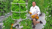 Chef John Mooney with his system in New York?s West Village: 'We can grow vertically, just like a city managing people.' (Future Growing, LLC)