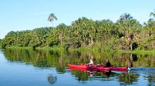 Exploring Venezuela's Orinoco River. (Robin Esrock/Robin Esrock)