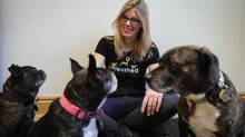 Kate Ferguson, owner of Unleashed in the City , a dog adventure company, poses for a photograph with her three dogs (from left) Jack, Bean and Sprout. A proposal has been forwarded to make 9pm-9am, leash free hours in some Toronto parks. Kate is not sold on the idea as some dogs with poor night vision might be easily spooked not to mention most users will probably not change the schedules and routines they already have.) (Fred Lum/The Globe and Mail)