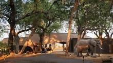 In September, British author Alexander McCall Smith will accompany an excursion in Botswana, through Belmond, whose Eagle Island Lodge featured in McCall Smith's novel The Double Comfort Safari Club. (Mark Williams/Belmond)