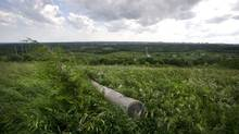 The Rouge Valley is seen from Beare Hill in Scarborough, Ont. June 28/2011. The hilltop is the site of a former landfill. (Kevin Van Paassen/The Globe and Mail/Kevin Van Paassen/The Globe and Mail)