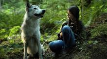 Shana: The Wolf's Music is based on a Swiss children's book by Federica de Cesco, about a 15-year-old First Nations girl in Canada. (HANDOUT)