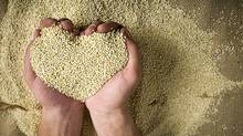 Heart shaped superfood organic Quinoa. (istockphoto)