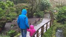 A two-year-old Metis girl at the heart of a court fight between her foster parents and the B.C. government walks with her foster father in Butchart Gardens, in an image provided by the foster mother, in Victoria, B.C. in January 2016. A British Columbia foster mother says there are no words to describe her loss after the provincial government removed a Metis toddler she has raised almost since birth from her care. THE CANADIAN PRESS/HO