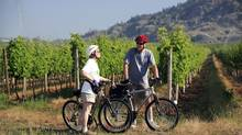 With its combination of warm climate, wine industry, orchards and lake, Osoyoos, B.C., appeals to people ready to shift from city to small town. (Osoyoos Tourism)
