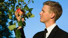 Businessman picking an apple. From Photos.com (Ulrich Willmünder/Getty Images/iStockphoto)