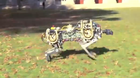 screen grab of cheetah robot