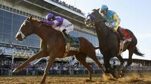 I'll Have Another (L) with jockey Mario Gutierrez passes Bodemeister with jockey Mike E. Smith to win the 137th running of the Preakness Stakes at Pimlico Race Course in Baltimore, Maryland, May 19, 2012. REUTERS/Mike Segar (Mike Segar/Reuters)
