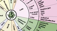 Wine Aroma Wheel (A C Noble 2002, www.winearomawheel.com)