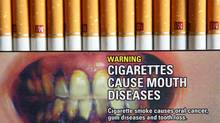 Marlboro cigarette styles