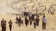 Displaced members of Iraq's Yazidi ethnic minority walk toward the Syrian border near Mount Sinjar. (Rodi Said/REUTERS)