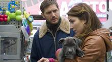 The puppy becomes a reason for Tom Hardy (playing Bob) and Noomi Rapace (Nadia) to bond in working-class Brooklyn. (Barry Wetcher SMPSP/Twentieth Century Fox)
