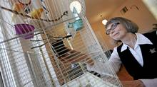 Sister Lesley Sacouman, executive director of Holy Names' House of Peace, tends to Eden and Hosanna, a pair of canaries, in Neighbours, her residence for single women in transition in downtown Winnipeg. (John Woods for the Globe and Mail)