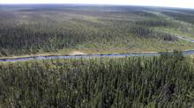 The Ring of Fire area of Northern Ontario. (Cliffs Natural Resources)