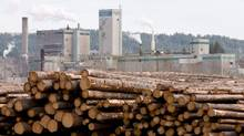 Logs are shown piled up at a timber mill in Quesnel, B.C., in this file photo. WorkSafeBC says it could be months before its investigation into an explosion and fire at WestPine MDF mill in Quesnel is complete. (JONATHAN HAYWARD/THE CANADIAN PRESS)