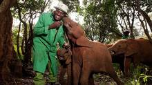 """Elephants and their keepers form strong bonds in the documentary """"Born to be Wild 3D."""" (Warner Bros.)"""