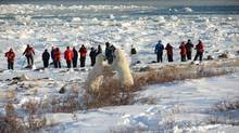 Armed guards watch closely as guests of Seal River Lodge focus on getting a great shot. (Bill Lyne)