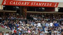 Fans watch bull riding rodeo action at the Calgary Stampede in Calgary, Wednesday, July 11, 2012. (Jeff McIntosh/THE CANADIAN PRESS)