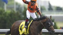 Jockey Justin Stein and horse Straight of Dover cross the finish line to win the running of the 153rd Queen's plate at Woodbine Racetrack in Toronto on Sunday, June 24, 2012. (Nathan Denette/THE CANADIAN PRESS)