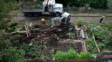 A Canadian Pacific Rail police officer, right, stands by as workers remove community gardens from a stretch of abandoned CP Rail line in Vancouver. The once-abandoned 11-kilometre-long Arbutus Corridor has been used by residents for many years as a greenway where community gardens were erected. (DARRYL DYCK/THE CANADIAN PRESS)