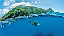 Saba Island, in the Caribbean, is a great diving destination. (Bruce Kirkby for The Globe and Mail)