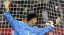 North Korea's goalkeeper Ri Myong-Guk fails to catch the ball as Brazil scores during their 2010 World Cup group G first round football match on June 15, 2010 at Ellis Park stadium in Johannesburg. Brazil won 2-1. (FABRICE COFFRINI)