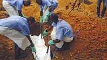 Volunteers lower a corpse, which is prepared with safe burial practices to ensure it does not pose a health risk to others and stop the chain of person-to-person transmission of Ebola, into a grave in Kailahun August 2, 2014. (Reuters/Handout)