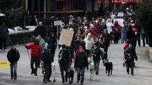 Dog owners march through the village during a demonstration against the slaughter of 100 healthy sled dogs by a local company in Whistler, B.C., on Saturday February 5, 2011. A Whistler outdoor adventure company shot and killed 100 healthy sled dogs after bookings dropped following the 2010 Winter Olympics. (Darryl Dyck/The Canadian Press/Darryl Dyck/The Canadian Press)