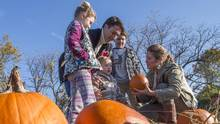 Justin Trudeau picks pumpkins with his wife Sophie and daughter Ella-Grace, sons Xavier and Hadrien on Monday, October 12, 2015. (Paul Chiasson/The Canadian Press)