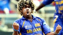 Sri Lankan bowler Lasith Malinga celebrates after dismissing New Zealand's captain Stephen Fleming during the ICC World Cup 2007 semi-final match between New Zealand and Sri Lanka at the Sabian Park Cricket Stadium in Kingston, 24 April 2007. New Zealand scored 53-2 at the end of 15 overs as they chase Sri Lanka's 289-5. Getty Images/Jewel SAMAD (JEWEL SAMAD)