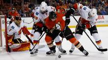 Rickard Rakell (67) of the Anaheim Ducks skates to a loose puck as Jonas Hiller (1), Matt Stajan (18), and Deryk Engelland (29) of the Calgary Flames defend during the first period of a game at Honda Center on February 21, 2016 in Anaheim, California. (Sean M. Haffey/Getty Images)