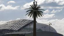 Transceiver equipment for mobile communication is mounted on top of an artificial palm tree near a venue of the Sochi 2014 Winter Games in Sochi, October 7, 2013. (THOMAS PETER/Reuters)