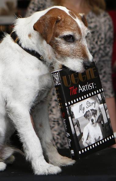 "Uggie, the canine star of ""The Artist,"" is seen here on Tuesday joining the dissolute ranks of forgotten A-listers seeking to rekindle their lost fame by publishing a self-serving, tell-all memoir of their journey from small-town dreamer with a song in their heart and a love of Judy Garland to the glitter of Hollywood and the inevitable shame spiral through rehab, neutering, forgiveness and ""Dancing with the Stars."" (Reuters)"
