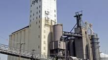 Cargill grain elevators in East St. Louis. (JAMES A. FINLEY/AP)